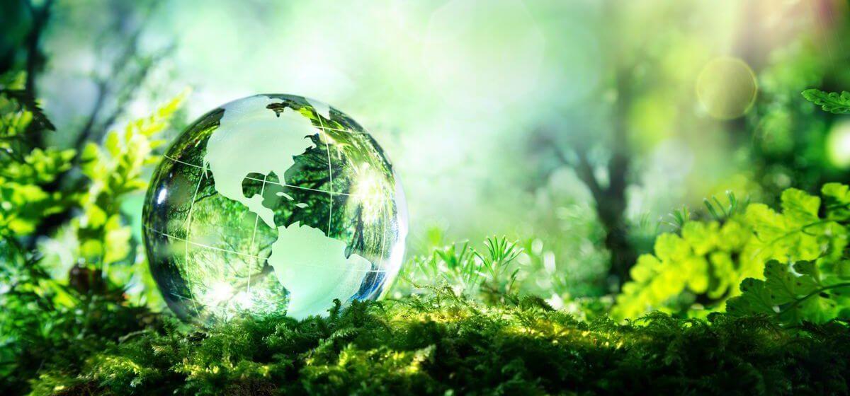 sustainabilty sustainability Sustainability sustainabilty 1200x560